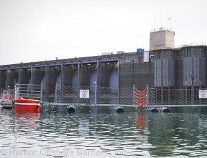 Waterside barrier system for dam protection